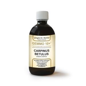 Carpino Gemmoderivato Concentrato Liquido analcoolico - www.AntiAgeBoutique.com